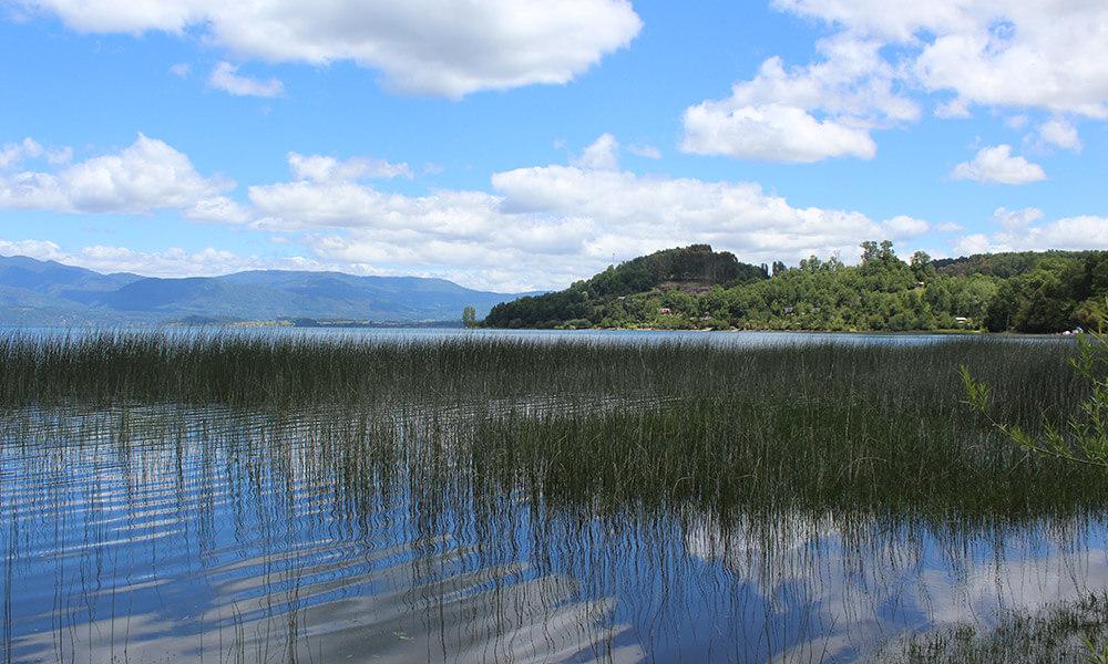 Humedal Huenehue