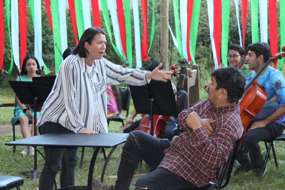 """Las dos últimas presentaciones de """"Teatro Juglar en tu plaza"""" se trasladan a Huilo Huilo y Choshuenco."""