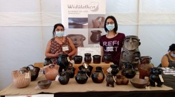 Expo Villarrica 3